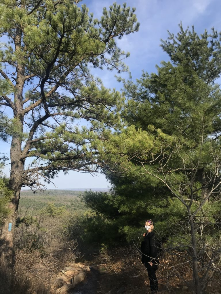 Want to find hiking trails and nature areas in New England? Toni from aWheelinthesky.com explores the skyline trail at Blue Hills Reservation, Massachusetts. Find local travel, hiking trails and nature areas in every state.