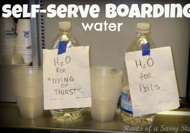 """Asking for water """"for a pill"""" is one of a flight attendant's pet peeves"""