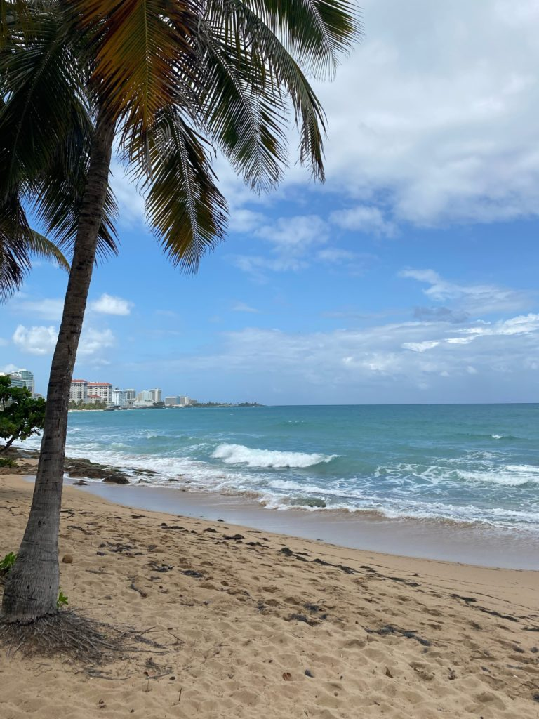 Ocean Park, the perfect place to spend a girl' trip to San Juan, Puerto Rico