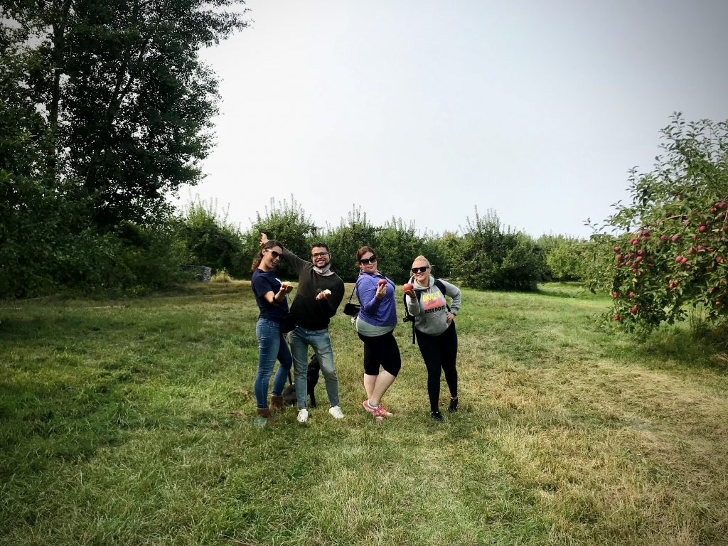 apple picking, things to do in new england, fall in new england